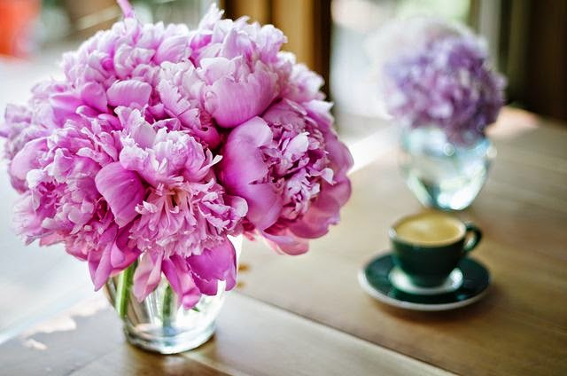 peonies and coffee