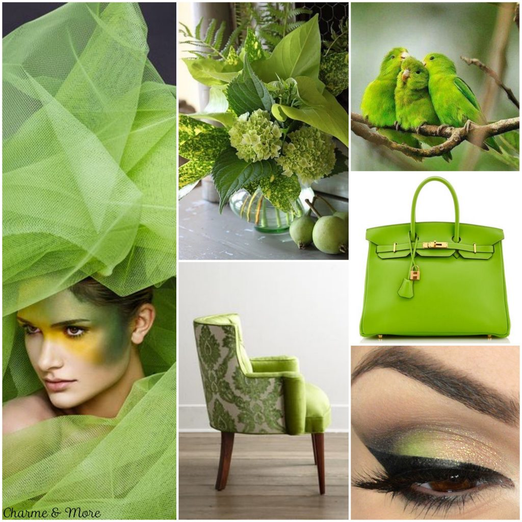 Collage Greenery