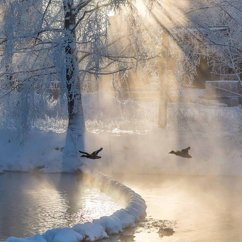 """Winter light.......by Petri Rämö"