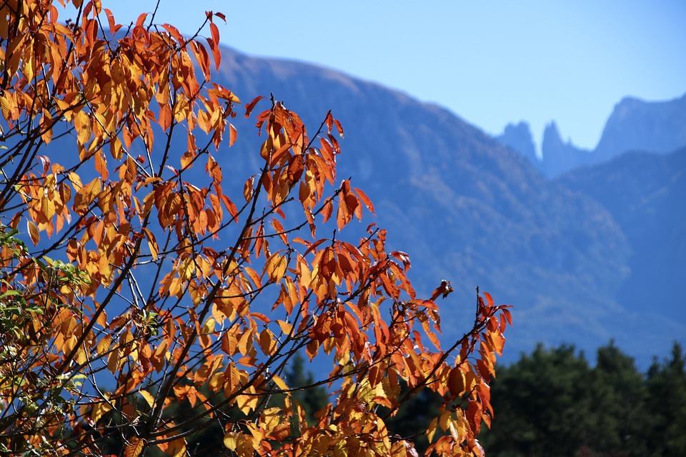 Weekend autunno foliage