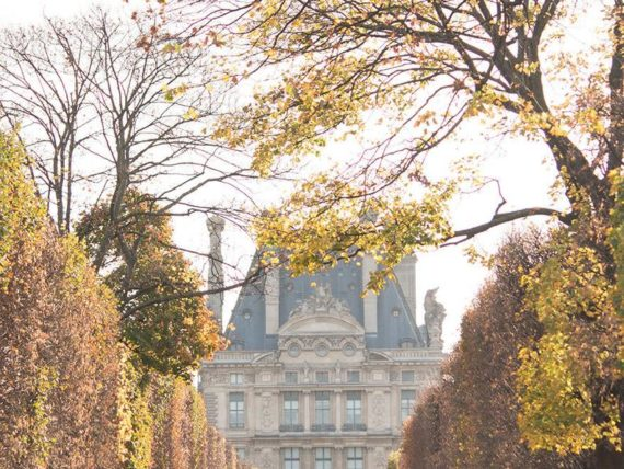 Jardin Des Tuileries by Rebecca Plotnick on etsy