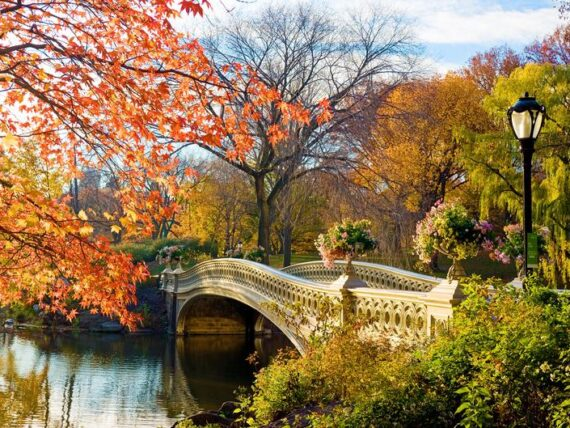 """Bow Bridge a Central Park, New York City durante la stagione autunnale"" Fotografia di Patrick Batchelder"