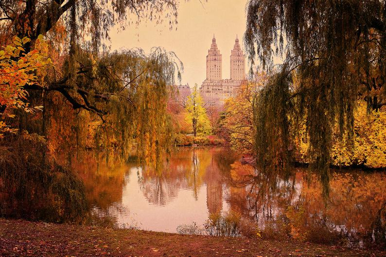 The Lake in Central Park, NYC Fotografia di klgphoto